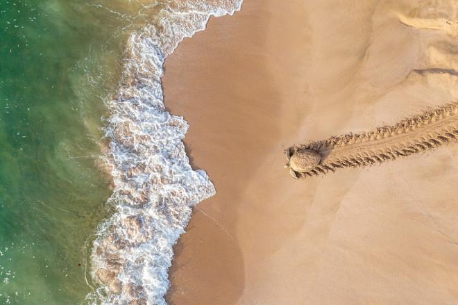Международный конкурс аэрофотографии Drone Photo Awards 2021 назвал победителей (фото 1)